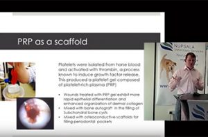 Webinar slide showing information about how to use PRP as a scaffold.