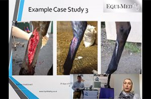 Equi-Med Ag Activated Carbon & Silver Dressings For Veterinary Use - webinar
